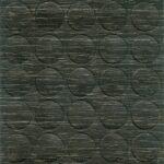 1520 Dąb czarny