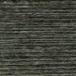 3162 Dąb czarny